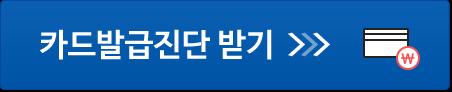 NICE지키미 카드발급진단
